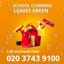 BR2 school cleaning Leaves Green