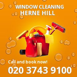 Herne Hill gutter cleaning SE24