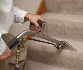 Why Deep Cleaning Your Carpets in Islington Is a Must