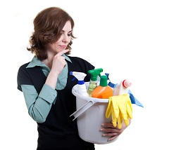 BR3 regular domestic cleaning Elmers End
