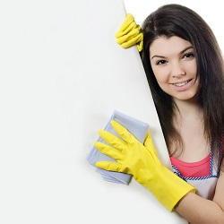 Hook spring cleaning KT9
