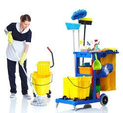 Windsor green floors cleaning TW18